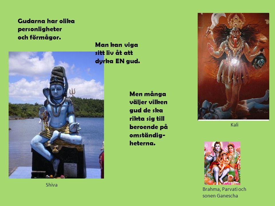 Gudarna har olika personligheter och förmågor.Man kan viga sitt liv åt att dyrka EN gud.
