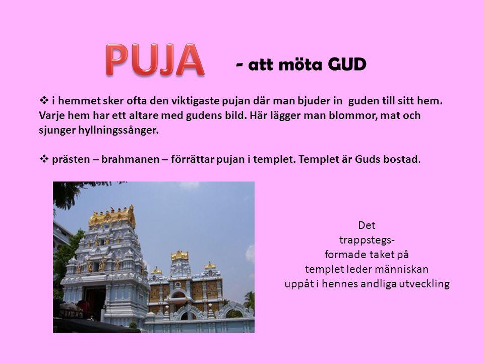 - att möta GUD  i hemmet sker ofta den viktigaste pujan där man bjuder in guden till sitt hem.