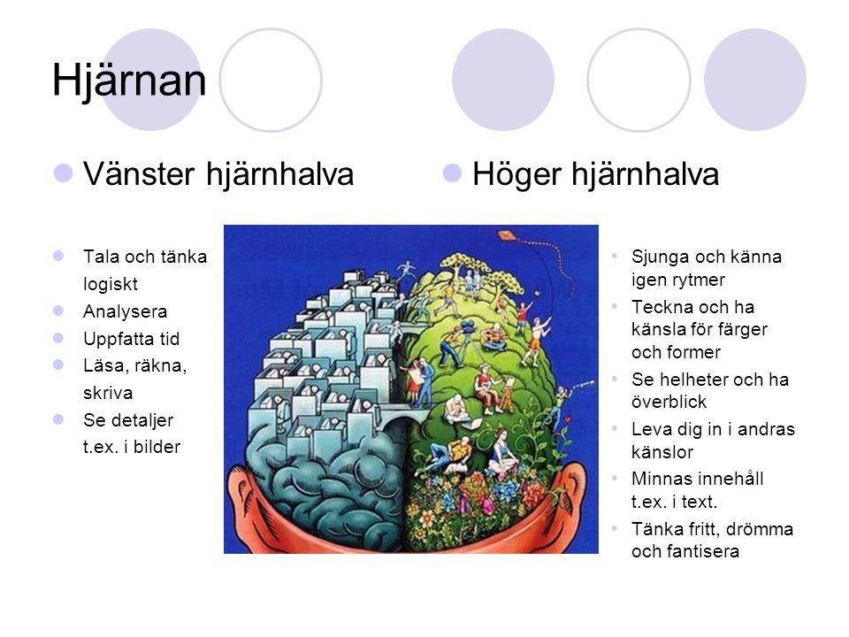Hjärnan Vänster hjärnhalva Tala och tänka logiskt Analysera Uppfatta tid Läsa, räkna, skriva Se detaljer t.ex. i bilder Höger hjärnhalva  Sjunga och