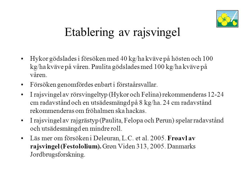 Etablering av rajsvingel Hykor gödslades i försöken med 40 kg/ha kväve på hösten och 100 kg/ha kväve på våren.