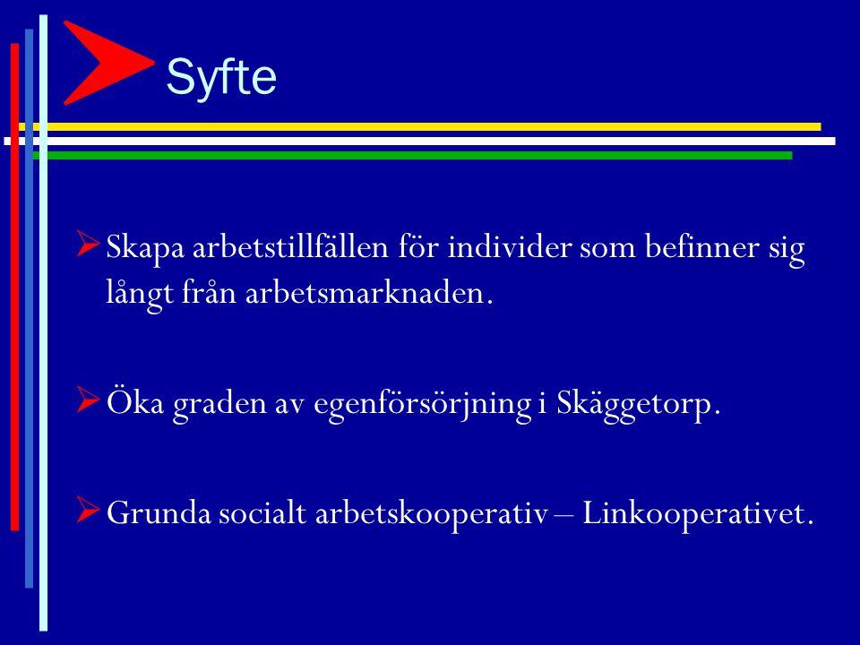 Bakgrund Stadsdelen Skäggetorp:  Hög arbetslöshet  Låga inkomster  Dålig hälsa  Obefintligt inflytande i samhället  ÅTGÄRDER BEHÖVS .