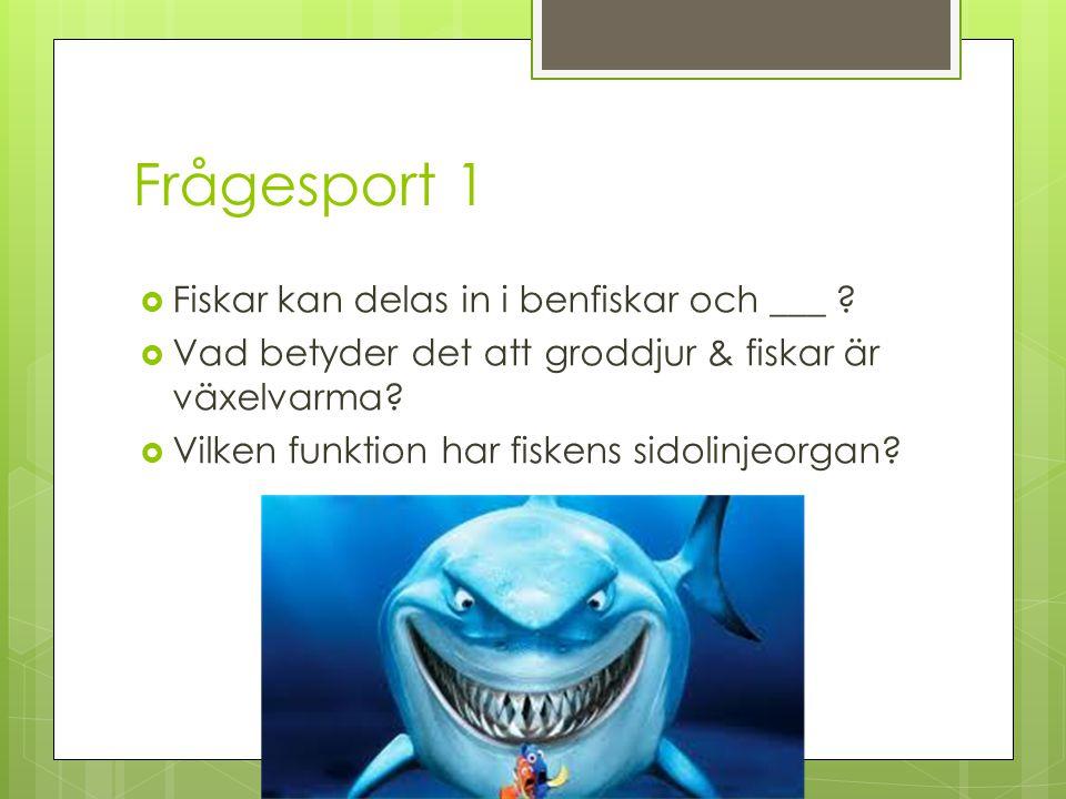 Frågesport 1  Fiskar kan delas in i benfiskar och ___ ?  Vad betyder det att groddjur & fiskar är växelvarma?  Vilken funktion har fiskens sidolinj