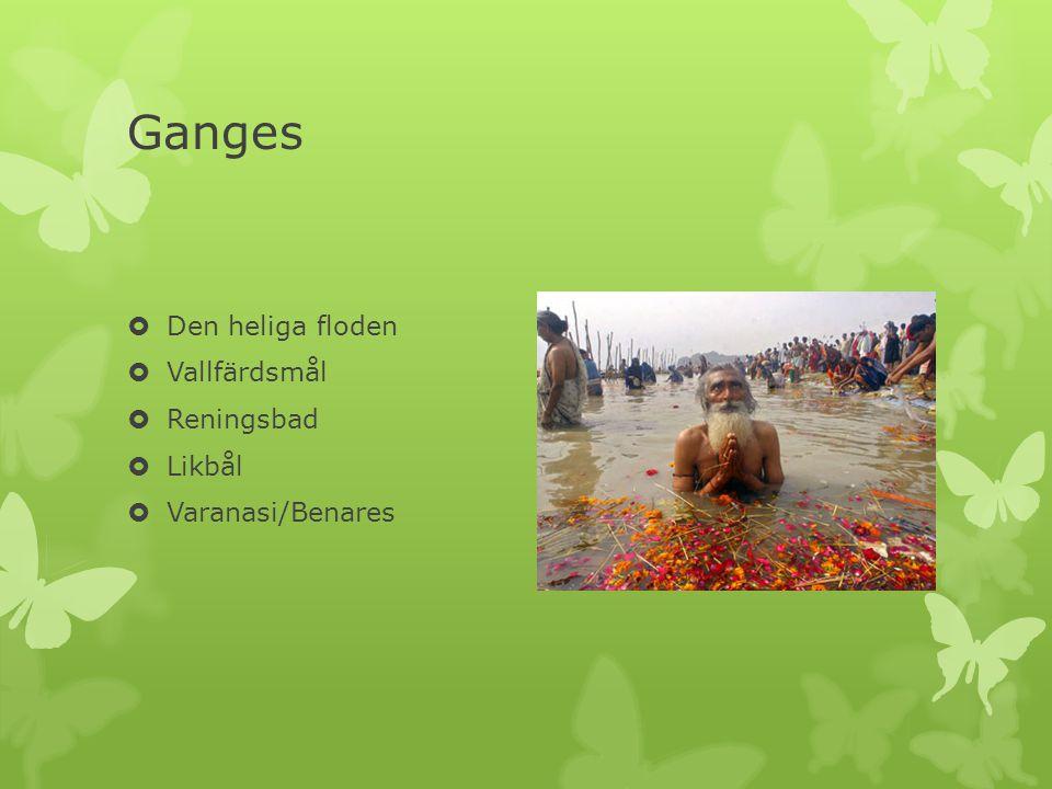 Ganges  Den heliga floden  Vallfärdsmål  Reningsbad  Likbål  Varanasi/Benares