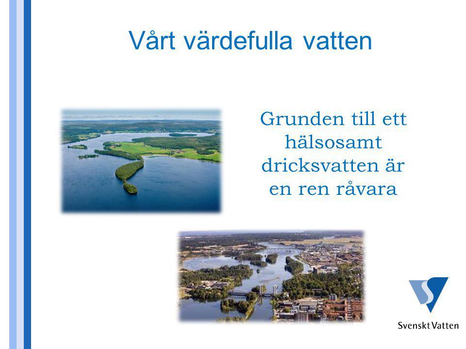 Uppsalas vattentäkt cirka 2 miljarder kr (mer än 100 000 invånare) Nolbys vattentäkt cirka 900 miljoner kr (12 000 invånare) Växjö ny vattentäkt cirka 450 miljoner kr (3 kommuner, 75 000 invånare) Mälarens värde 40 miljarder kr (Dricksvattensystemet 2 miljarder kr per år) Vårt värdefulla vatten