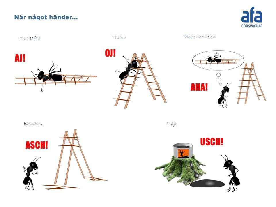 Olycksfall Tillbud Riskobservation EgendomMiljö AJ! OJ! ASCH! AHA! När något händer… USCH!