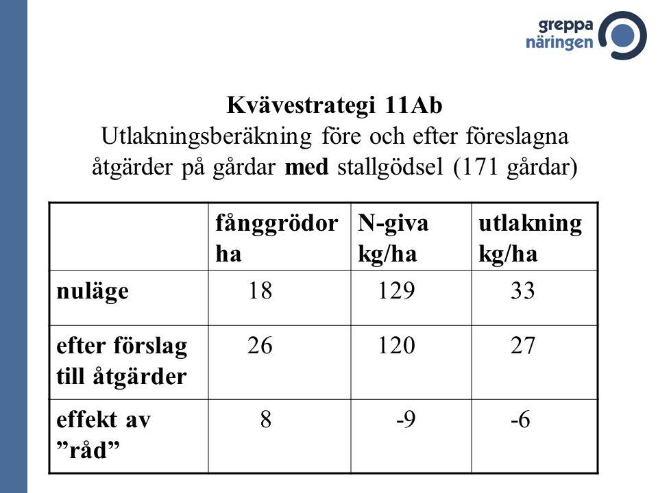 Kvävestrategi 11Ab Utlakningsberäkning före och efter föreslagna åtgärder på gårdar med stallgödsel (171 gårdar) fånggrödor ha N-giva kg/ha utlakning kg/ha nuläge 18 129 33 efter förslag till åtgärder 26 120 27 effekt av råd 8 -9 -6