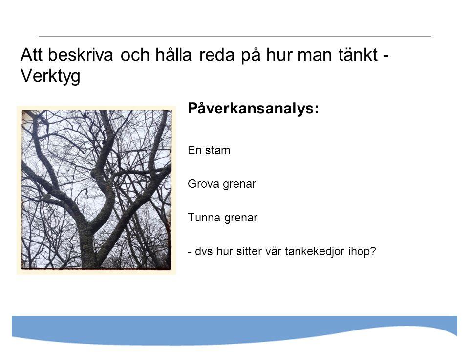 Att beskriva och hålla reda på hur man tänkt - Verktyg Påverkansanalys: En stam Grova grenar Tunna grenar - dvs hur sitter vår tankekedjor ihop?