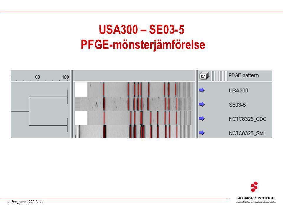 S. Hæggman 2007-11-16 USA300 – SE03-5 PFGE-mönsterjämförelse