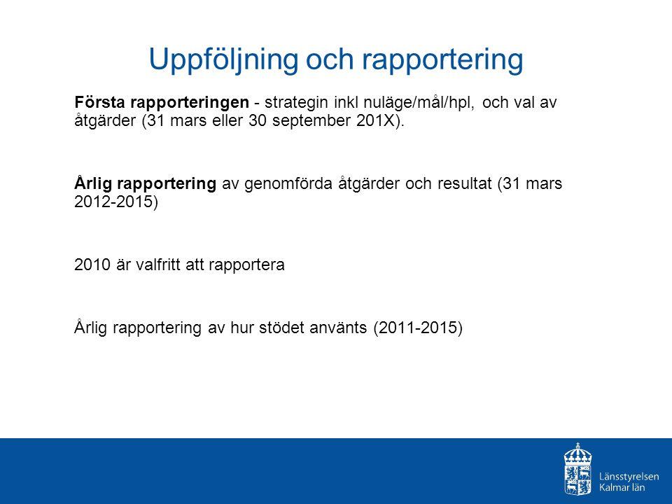 Uppföljning och rapportering Första rapporteringen - strategin inkl nuläge/mål/hpl, och val av åtgärder (31 mars eller 30 september 201X). Årlig rappo