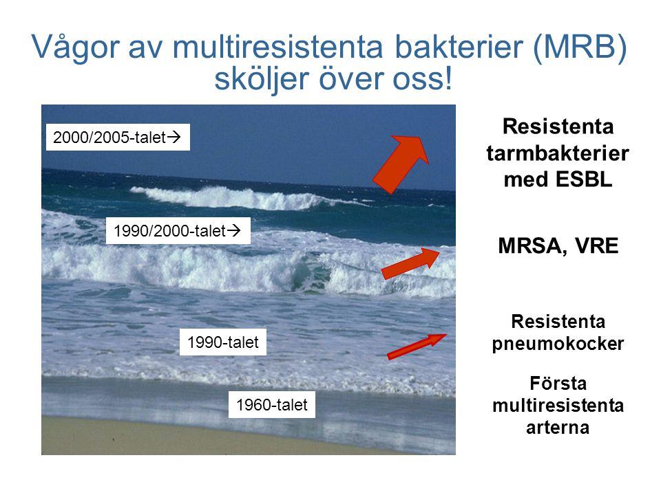 Vågor av multiresistenta bakterier (MRB) sköljer över oss.
