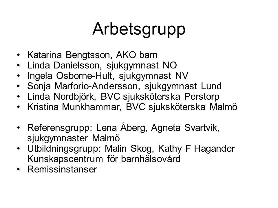 Arbetsgrupp Katarina Bengtsson, AKO barn Linda Danielsson, sjukgymnast NO Ingela Osborne-Hult, sjukgymnast NV Sonja Marforio-Andersson, sjukgymnast Lund Linda Nordbjörk, BVC sjuksköterska Perstorp Kristina Munkhammar, BVC sjuksköterska Malmö Referensgrupp: Lena Åberg, Agneta Svartvik, sjukgymnaster Malmö Utbildningsgrupp: Malin Skog, Kathy F Hagander Kunskapscentrum för barnhälsovård Remissinstanser