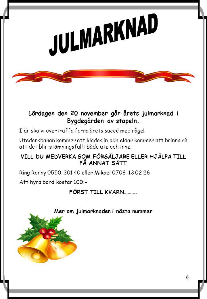 6 Lördagen den 20 november går årets julmarknad i Bygdegården av stapeln.