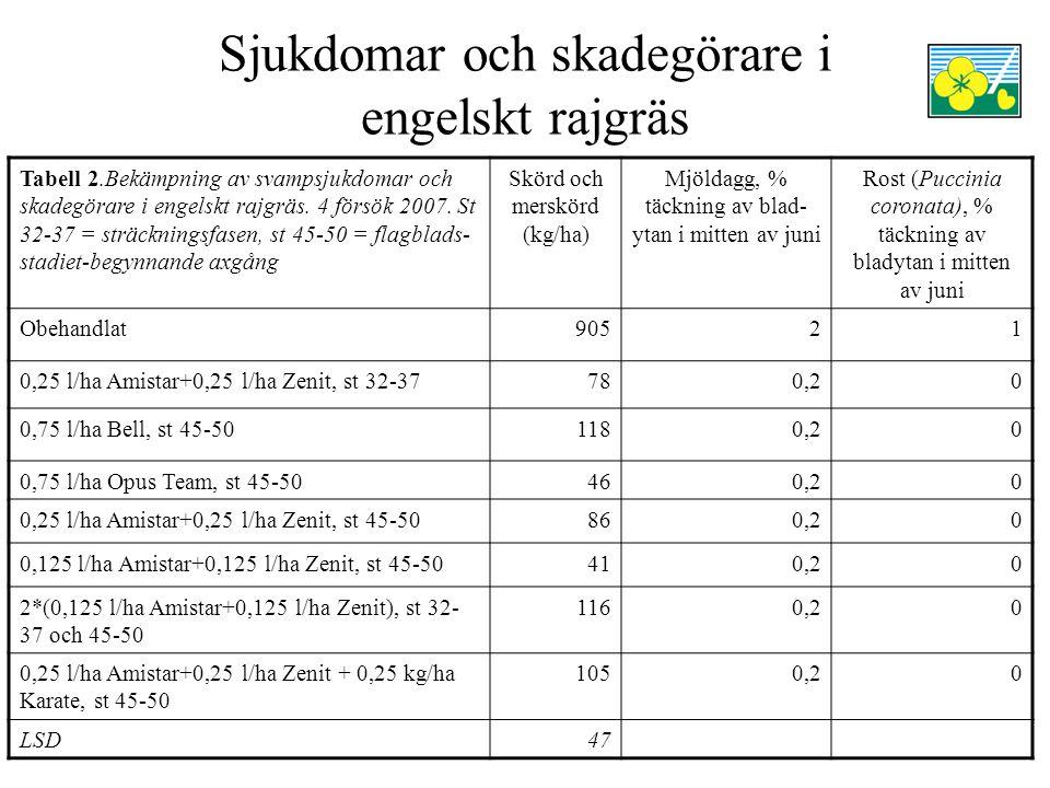 Sjukdomar och skadegörare i engelskt rajgräs Tabell 2.Bekämpning av svampsjukdomar och skadegörare i engelskt rajgräs. 4 försök 2007. St 32-37 = sträc
