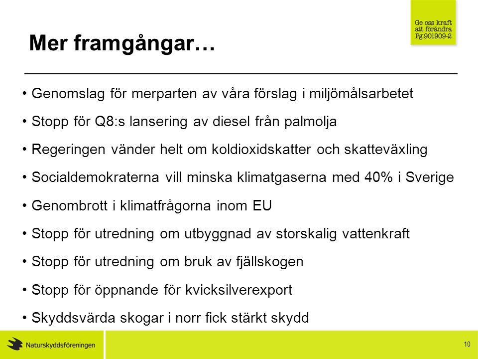 10 Mer framgångar… Genomslag för merparten av våra förslag i miljömålsarbetet Stopp för Q8:s lansering av diesel från palmolja Regeringen vänder helt om koldioxidskatter och skatteväxling Socialdemokraterna vill minska klimatgaserna med 40% i Sverige Genombrott i klimatfrågorna inom EU Stopp för utredning om utbyggnad av storskalig vattenkraft Stopp för utredning om bruk av fjällskogen Stopp för öppnande för kvicksilverexport Skyddsvärda skogar i norr fick stärkt skydd