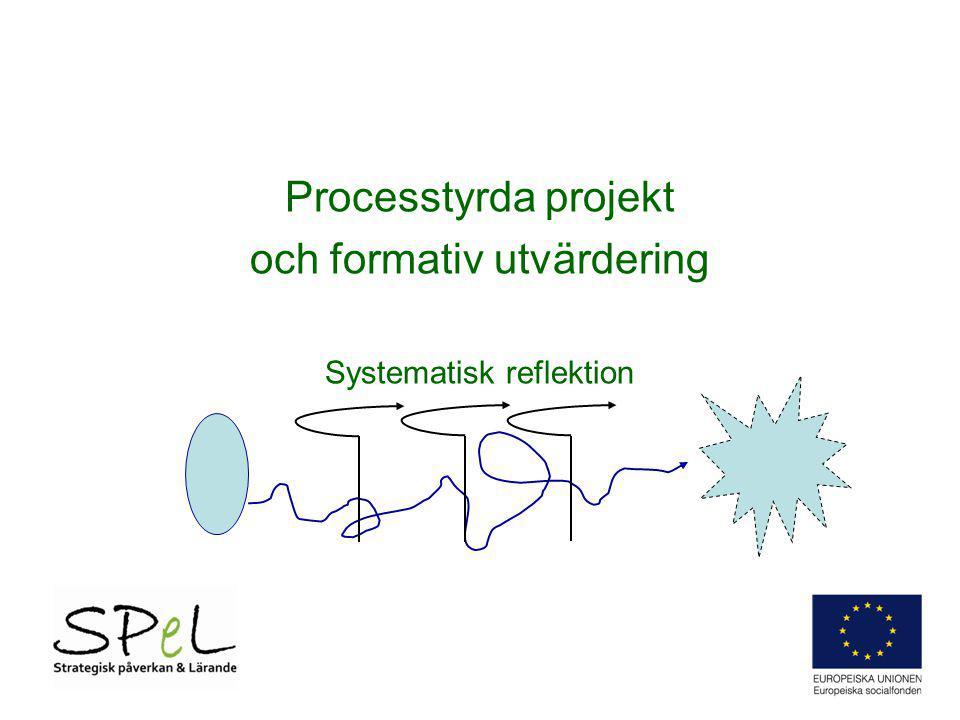 Processtyrda projekt och formativ utvärdering Systematisk reflektion