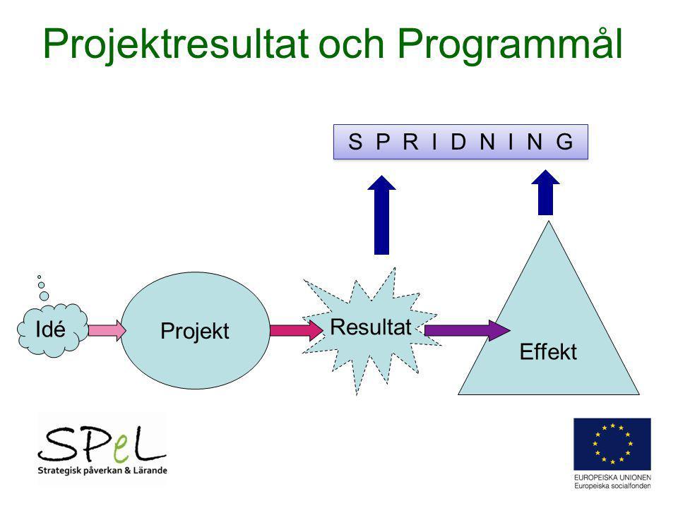 Projekt Projektresultat och Programmål Resultat Effekt Idé S P R I D N I N G