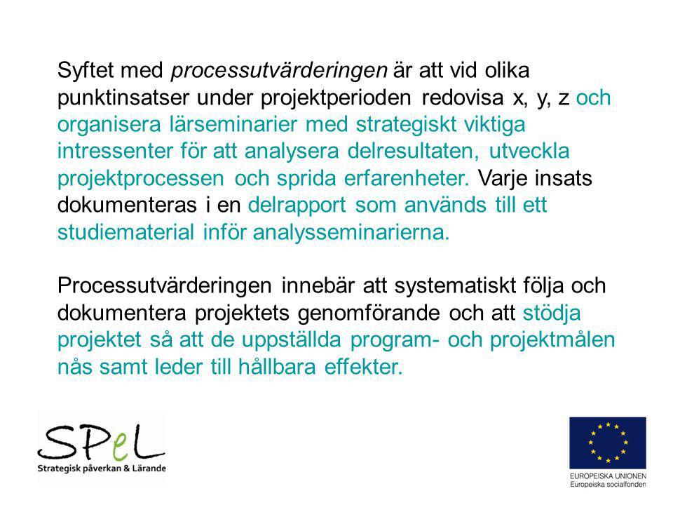 Syftet med processutvärderingen är att vid olika punktinsatser under projektperioden redovisa x, y, z och organisera lärseminarier med strategiskt vik