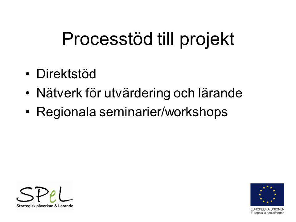 Processtöd till projekt Direktstöd Nätverk för utvärdering och lärande Regionala seminarier/workshops
