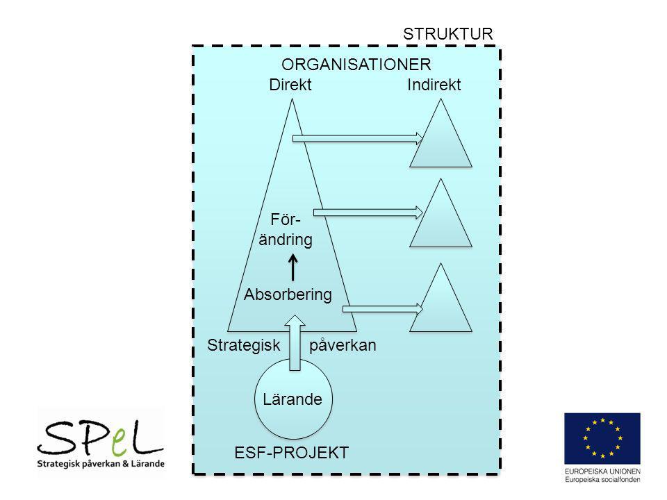 Absorbering För- ändring ESF-PROJEKT ORGANISATIONER Direkt Indirekt STRUKTUR Lärande Strategisk påverkan