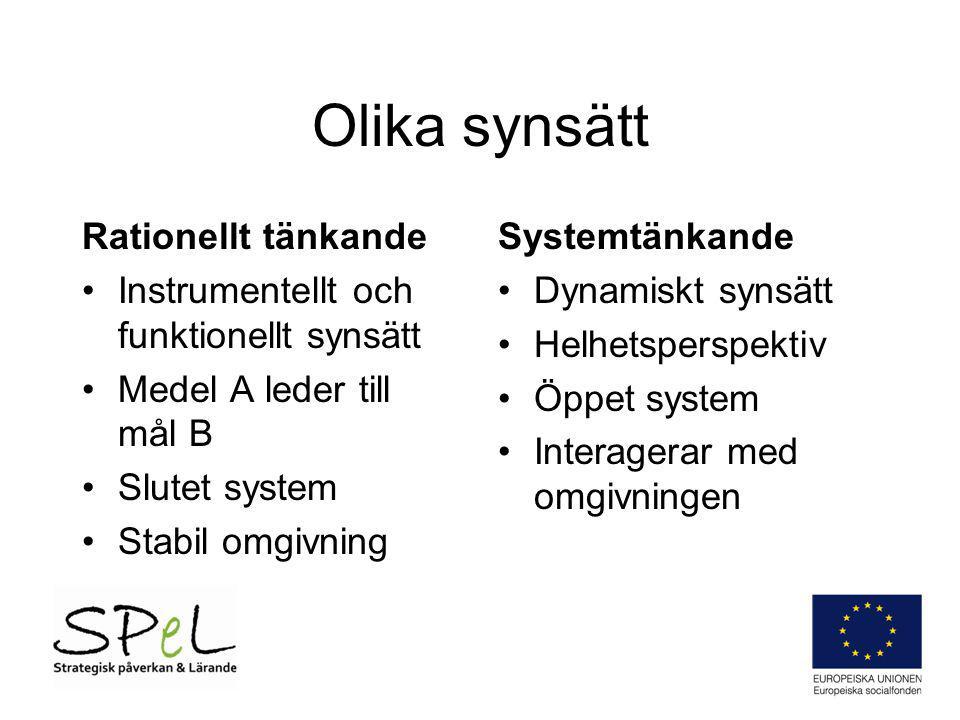 Olika synsätt Rationellt tänkande Instrumentellt och funktionellt synsätt Medel A leder till mål B Slutet system Stabil omgivning Systemtänkande Dynam