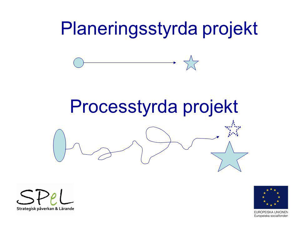 Exempel ur en offerttext: Syftet med processutvärderingen är att vid punktinsatser under projektperioden redovisa och analysera - deltagarnas synpunkter - projektets genomförande i relation till ansökan - projektets organisation, insatser och metoder - faktorer som rör programkriterier - aspekter som rör de horisontella kriterierna Processutvärderingen innebär att systematiskt följa och dokumentera projektets genomförande och att studera förutsättningarna för att de uppställda program- och projektmålen ska nås.