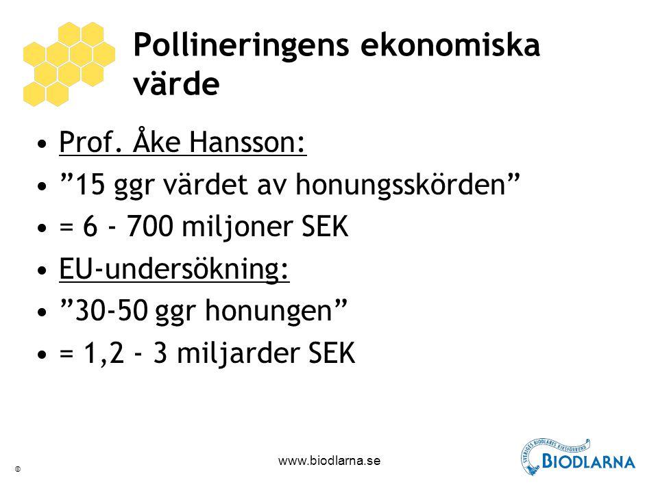 © www.biodlarna.se Betydelse för skörden Äpple70%4-6 Päron70%3-5 Plommon50%2-3 Körsbär40% 10 Sv.