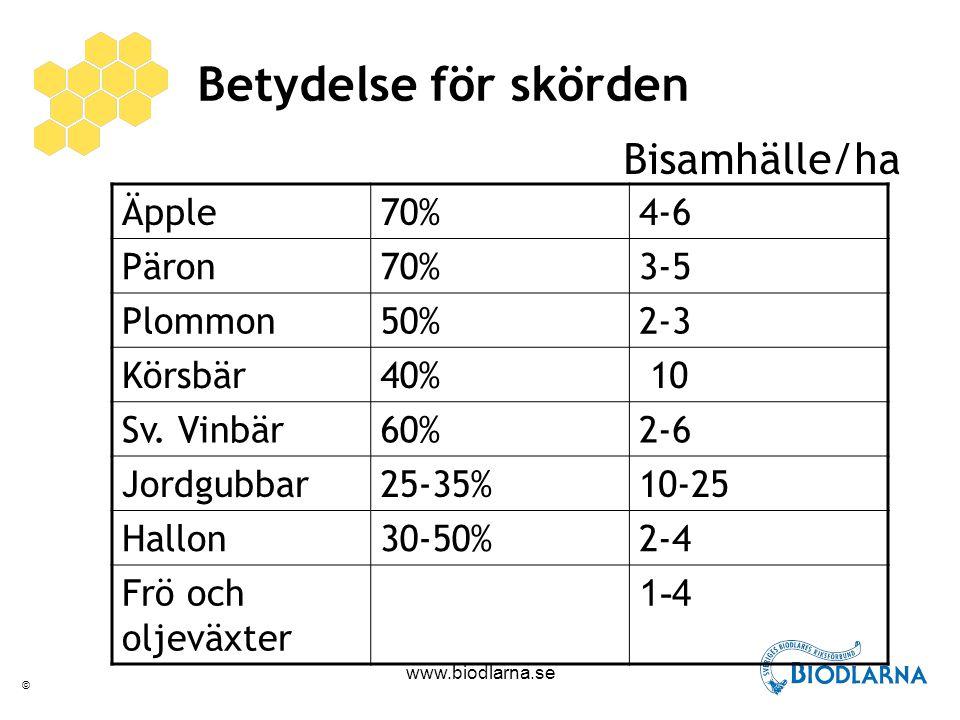 © www.biodlarna.se Kan biodlarna ersättas genom miljöersättningen? Foto: Preben Kristiansen