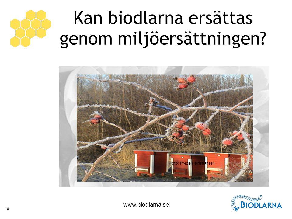 © www.biodlarna.se Kan biodlarna ersättas genom miljöersättningen Foto: Preben Kristiansen