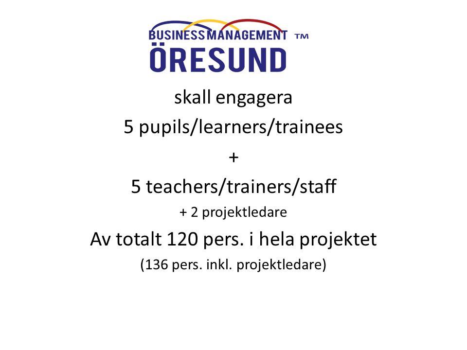 BMÖ skall engagera 5 pupils/learners/trainees + 5 teachers/trainers/staff + 2 projektledare Av totalt 120 pers. i hela projektet (136 pers. inkl. proj