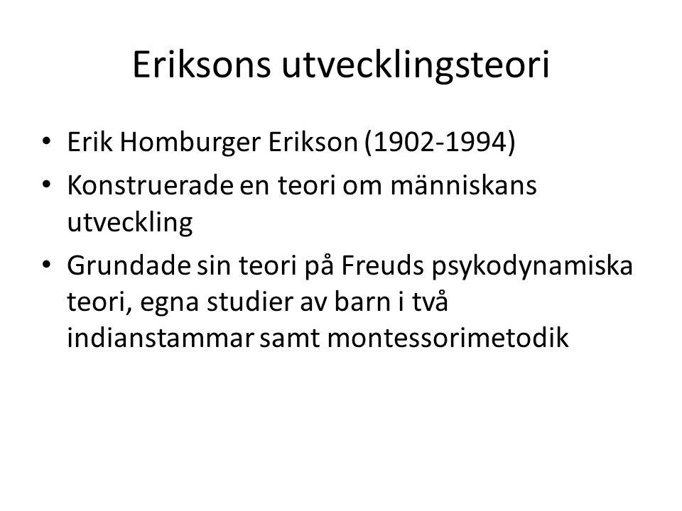 Eriksons utvecklingsteori Erik Homburger Erikson (1902-1994) Konstruerade en teori om människans utveckling Grundade sin teori på Freuds psykodynamisk