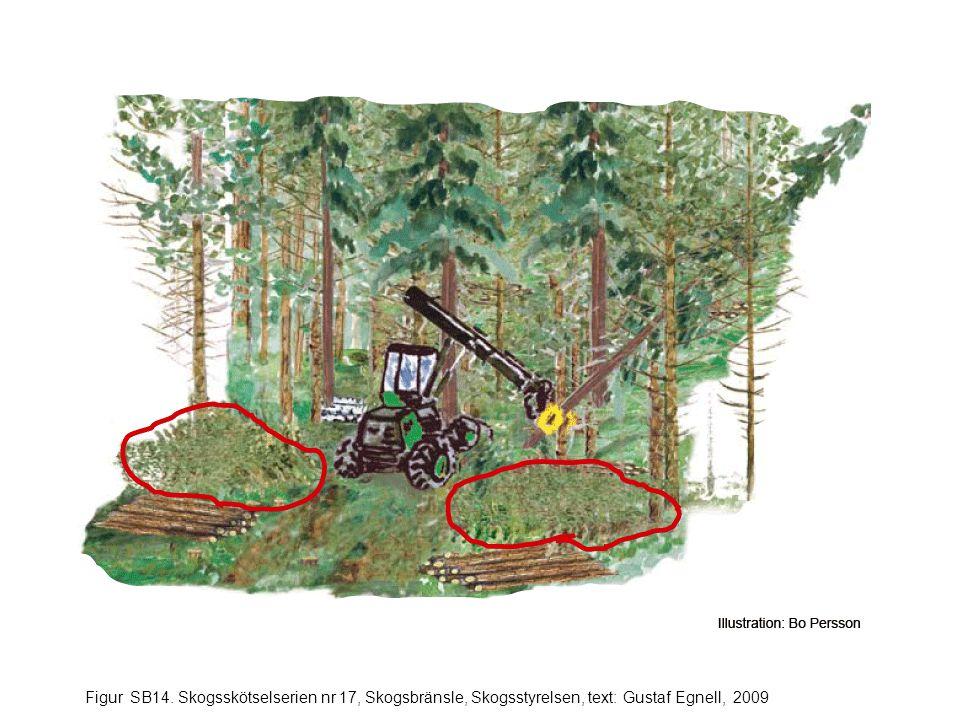 Figur SB14. Skogsskötselserien nr 17, Skogsbränsle, Skogsstyrelsen, text: Gustaf Egnell, 2009