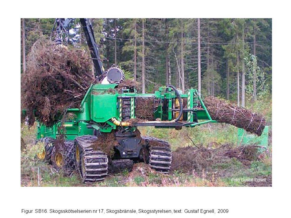 Figur SB16. Skogsskötselserien nr 17, Skogsbränsle, Skogsstyrelsen, text: Gustaf Egnell, 2009