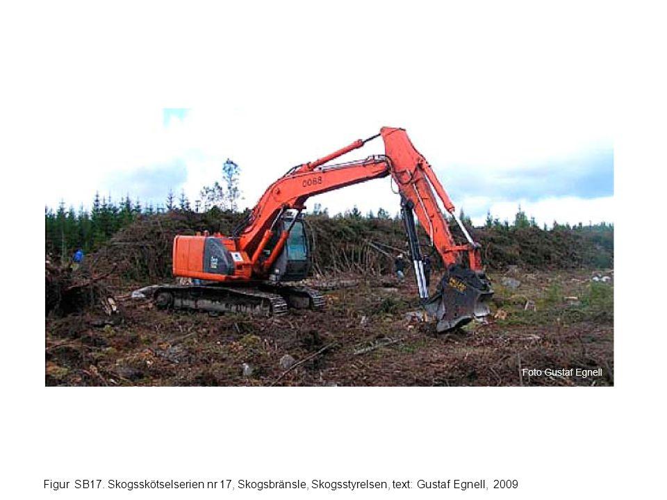 Figur SB17. Skogsskötselserien nr 17, Skogsbränsle, Skogsstyrelsen, text: Gustaf Egnell, 2009