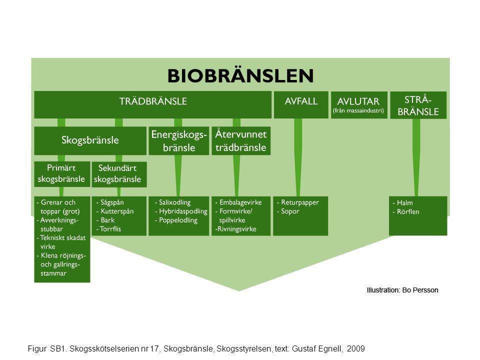 Figur SB1. Skogsskötselserien nr 17, Skogsbränsle, Skogsstyrelsen, text: Gustaf Egnell, 2009