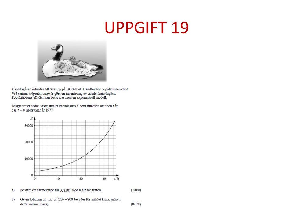 UPPGIFT 19