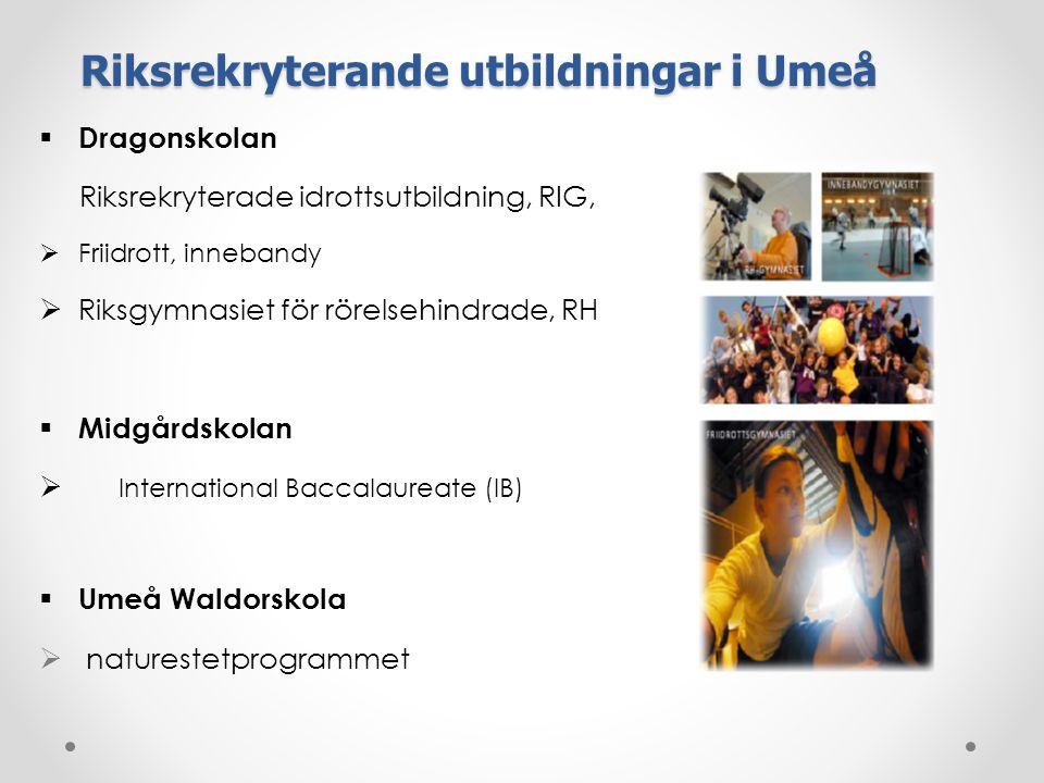 Riksrekryterande utbildningar i Umeå  Dragonskolan Riksrekryterade idrottsutbildning, RIG,  Friidrott, innebandy  Riksgymnasiet för rörelsehindrade, RH  Midgårdskolan  International Baccalaureate (IB)  Umeå Waldorskola  naturestetprogrammet