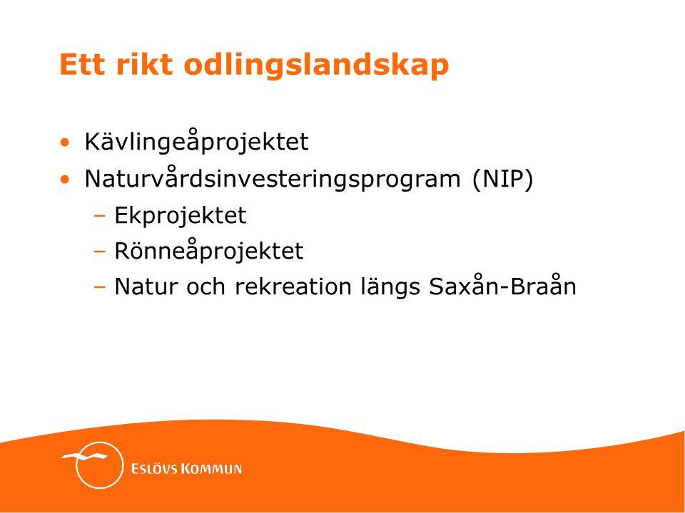 Ett rikt odlingslandskap Kävlingeåprojektet Naturvårdsinvesteringsprogram (NIP) –Ekprojektet –Rönneåprojektet –Natur och rekreation längs Saxån-Braån