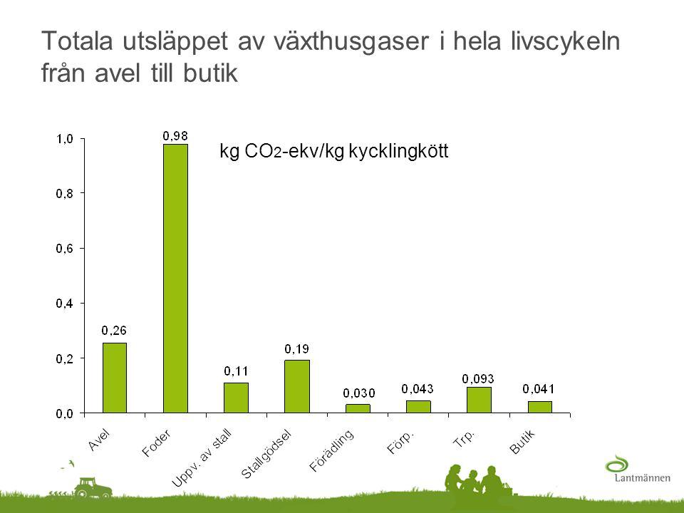 Totala utsläppet av växthusgaser i hela livscykeln från avel till butik kg CO 2 -ekv/kg kycklingkött