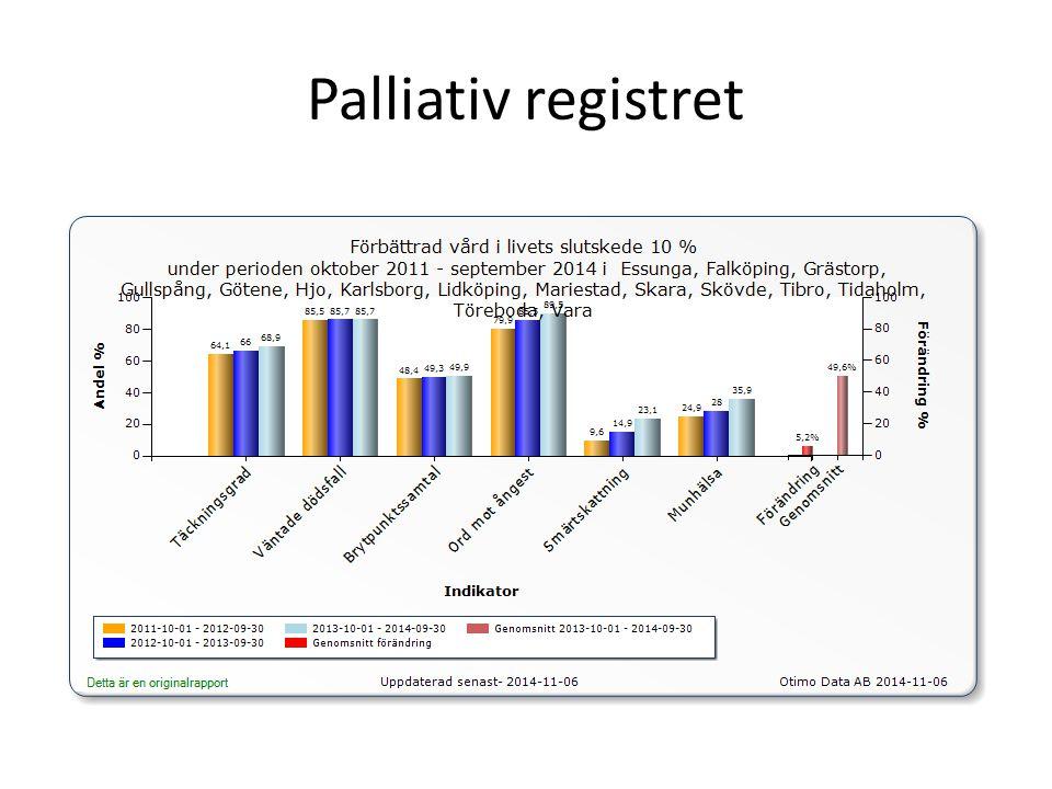 Palliativ registret
