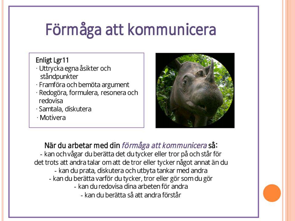 H EMSIDOR Bytt namn seglet6.fjordskolan.se All information hittas på hemsidan