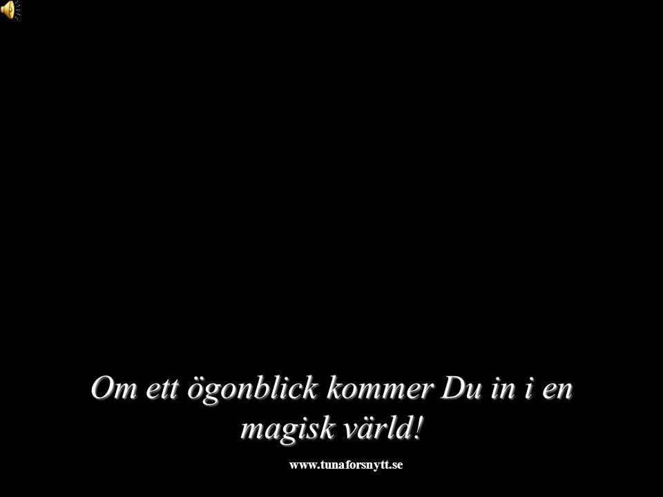 Om ett ögonblick kommer Du in i en magisk värld! 2015-01-121http://www.tunaforsnytt.se/
