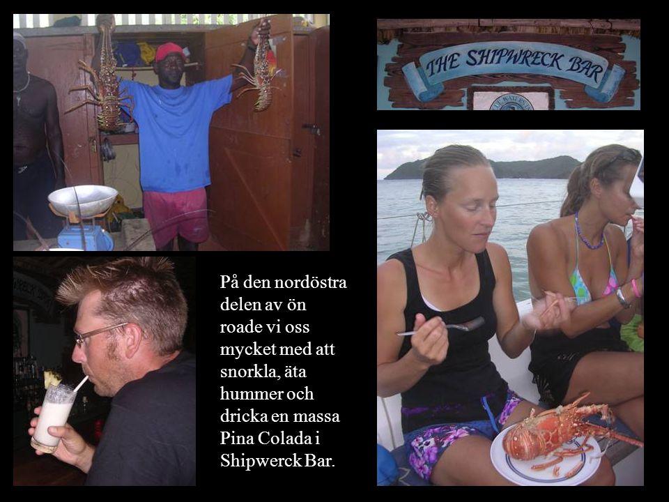 På den nordöstra delen av ön roade vi oss mycket med att snorkla, äta hummer och dricka en massa Pina Colada i Shipwerck Bar.