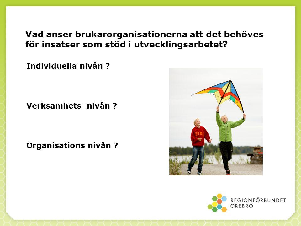 Vad anser brukarorganisationerna att det behöves för insatser som stöd i utvecklingsarbetet? Individuella nivån ? Verksamhets nivån ? Organisations ni