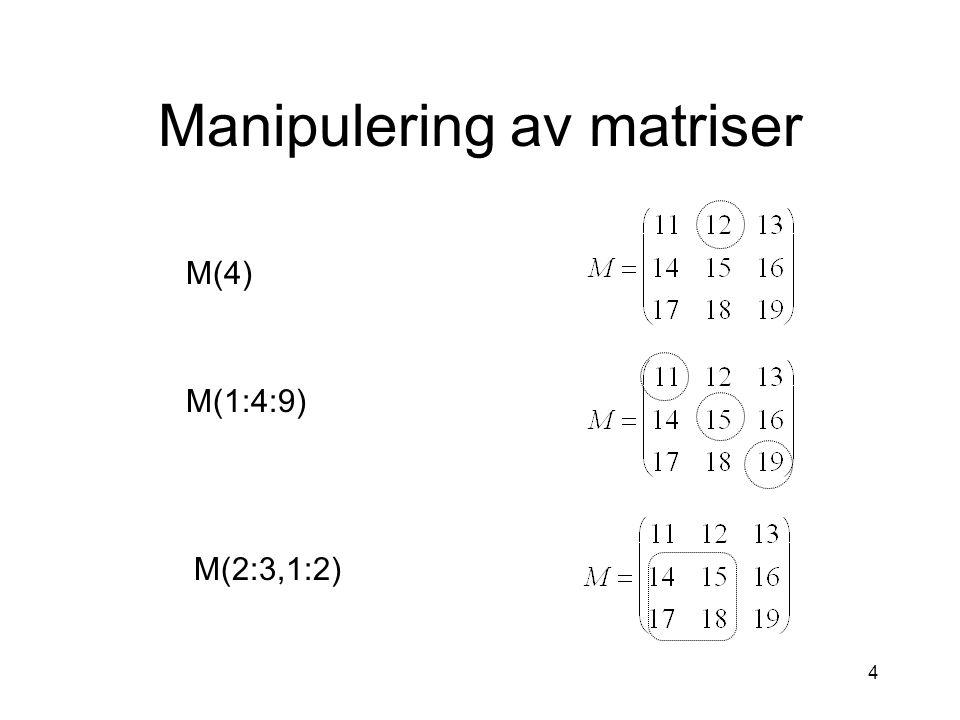 4 Manipulering av matriser M(4) M(1:4:9) M(2:3,1:2)