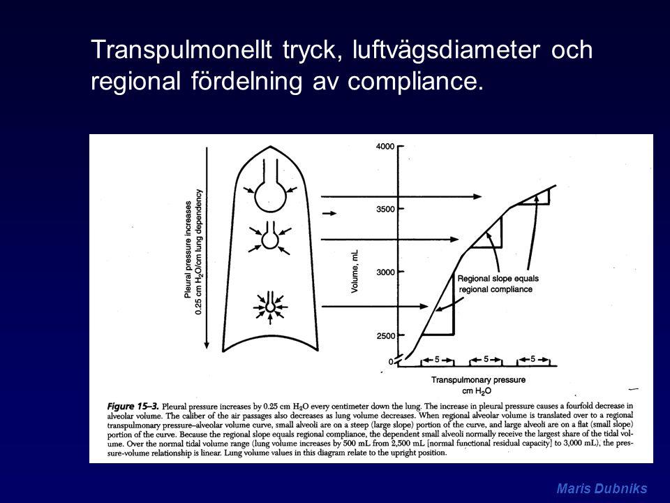 Maris Dubniks Transpulmonellt tryck, luftvägsdiameter och regional fördelning av compliance.