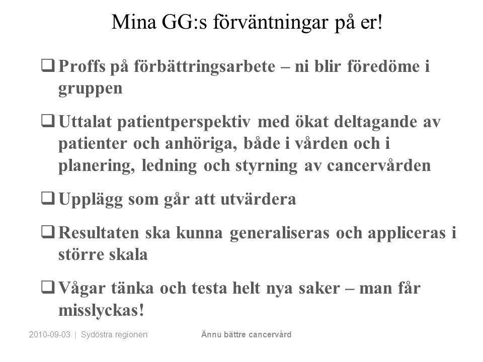 Mina GG:s förväntningar på er!  Proffs på förbättringsarbete – ni blir föredöme i gruppen  Uttalat patientperspektiv med ökat deltagande av patiente