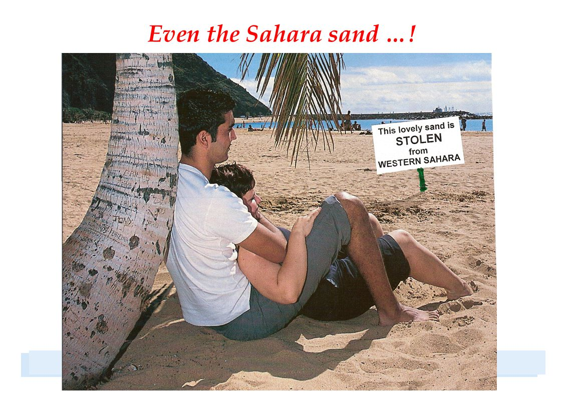 Even the Sahara sand …!