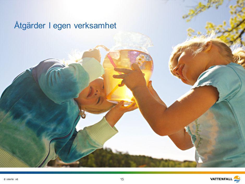 © Vattenfall AB 15 STO-STV080-20070108-A1-GlobalMappingOfGGAO_FINAL Åtgärder I egen verksamhet
