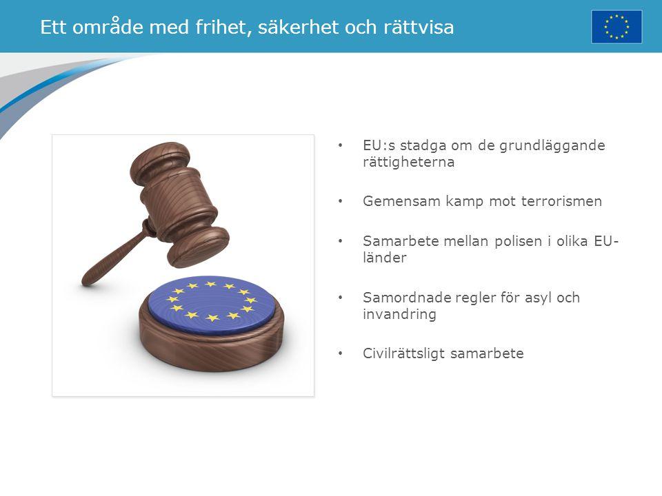 Ett område med frihet, säkerhet och rättvisa EU:s stadga om de grundläggande rättigheterna Gemensam kamp mot terrorismen Samarbete mellan polisen i ol