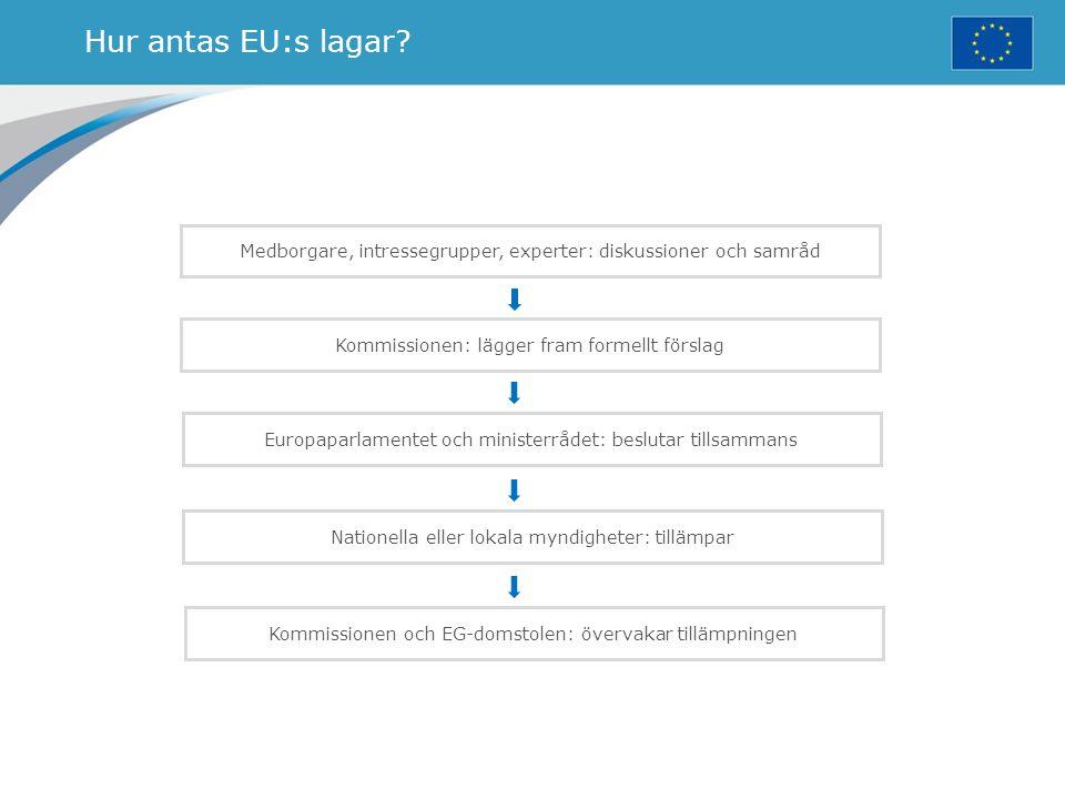 Hur antas EU:s lagar? Medborgare, intressegrupper, experter: diskussioner och samråd Kommissionen: lägger fram formellt förslag Europaparlamentet och